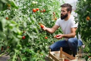 Agricultura e Pescas. Encontra aqui emprego | Talent Portugal